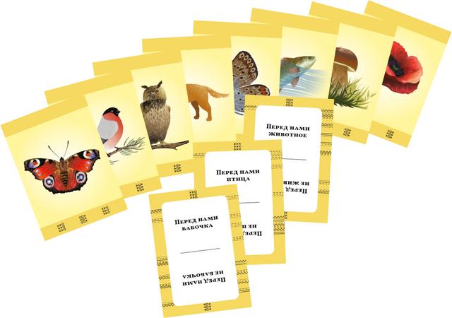 Карточка союза из игры «Союзики».